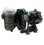 Sta-Rite S5P2R ECO Pumpe, bis zu 22 m3/h